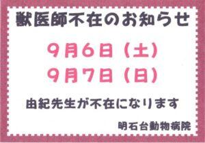 IMG (7)