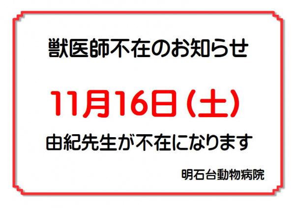 11月不在(由紀先生)